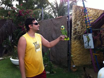 Gastoa, o papagaio fêmea da Pousada