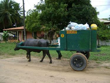 Foto:http://boleiadatoyota.blogspot.com.br