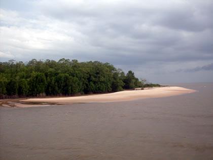 Vista da Ilha de Marajó