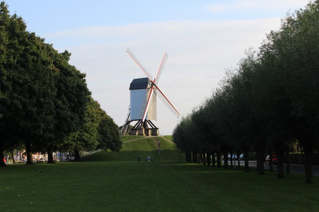 Moinho em Bruges