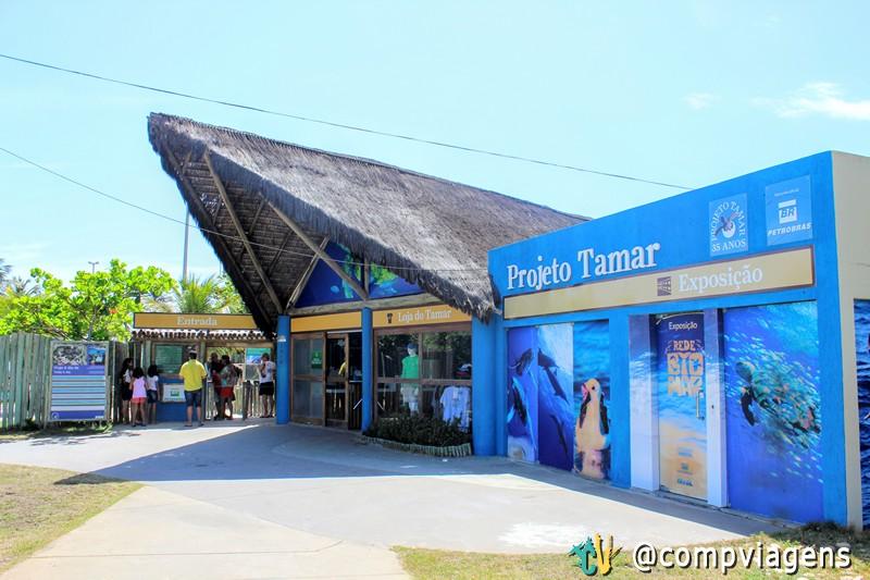 Projeto Tamar, em Aracaju