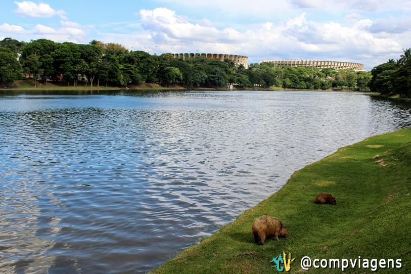 Mineirão e Mineirinho, vistos da Lagoa da Pampulha