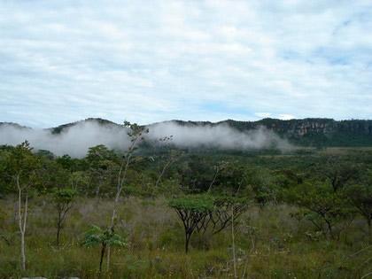Grande névoa. Na trilha para os Saltos I e II - Parque Nacional da Chapada dos Veadeiros
