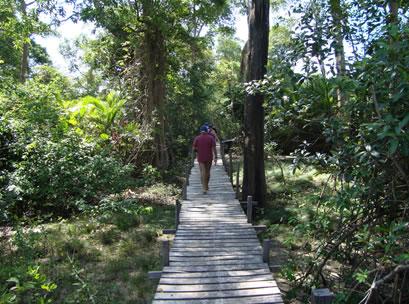 Lúcio no caminho para Barra Velha
