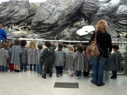 Crianças fofíssimas fazem passeio da escola no Oceanário