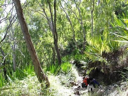 Descendo a Monte Velha caminho de Mosteiros - Ilha do Fogo