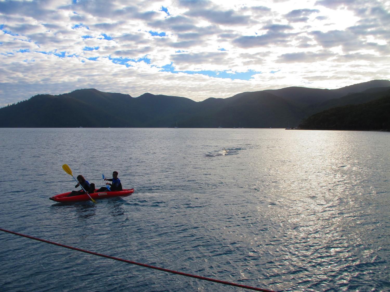 Fugindo da baleia em Whitsundays