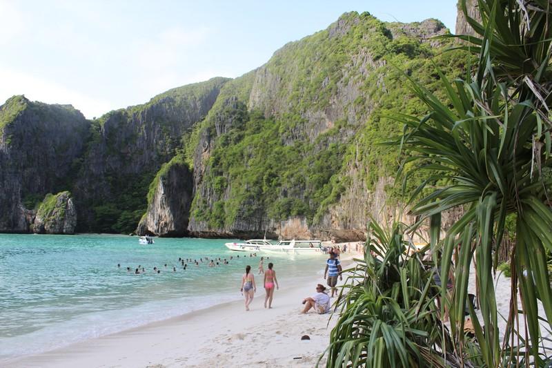 Maya Bay, A Praia