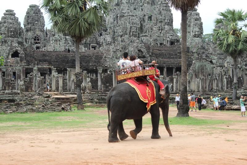 Mas há quem vá de elefante. O que não recomendo.