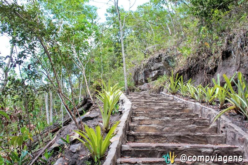 Escada na trilha para Cachoeira do Mosquito