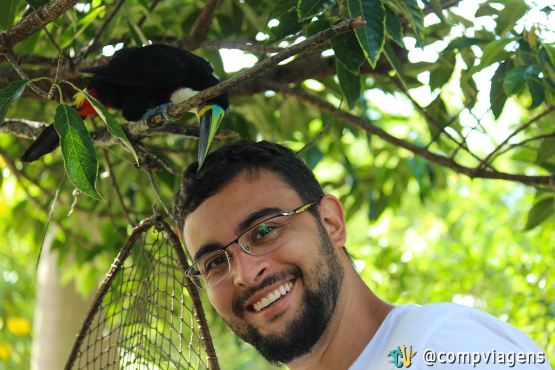 Fred recebendo cafuné de tucano livre, que é alimentado por uma moradora em Cavalcante